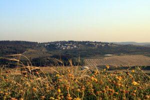 WAHAT AS-SALAM NEVE SHALOM – La fabbrica della speranza